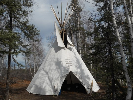 Teepee in the bush