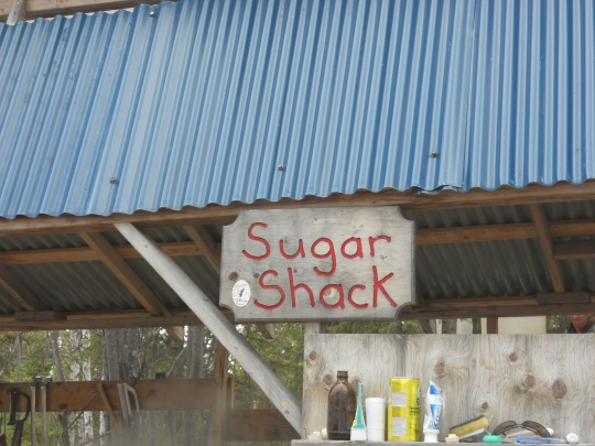 Sugar shack outside Yellowknife