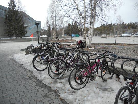 Bikes on ice