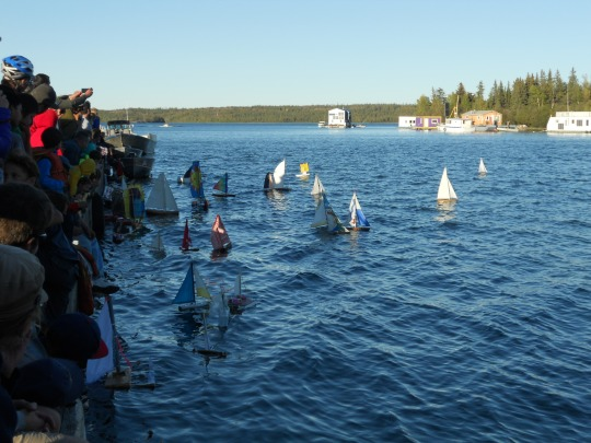 Toy sailboats race in progress